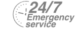 24/7 Emergency Service Pest Control in Thamesmead, SE28. Call Now! 020 8166 9746